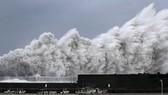 Bão mạnh nhất 25 năm qua đổ bộ Nhật Bản. (Ảnh: Reuters)