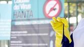 Argentina: Cảnh báo bùng phát dịch bệnh từ chuột