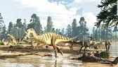 Phát hiện xương khủng long hiếm ở Australia