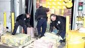 Mỹ tịch thu lượng cocaine kỷ lục