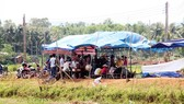 Người dân thôn Châu Trúc dựng rạp canh giữ 3 ô tô (trong đó 2 xe công vụ) để mong được đối thoại với lãnh đạo tỉnh Bình Định về dự án điện mặt trời, vào tháng 7-2018.