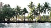 Quốc đảo Tuvalu đang chìm dần