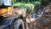 Tiêu hủy heo bệnh trên địa bàn huyện Phú Giáo, Bình Dương