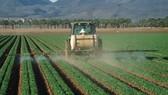 Mỹ sử dụng 25% số thuốc bảo vệ thực vật bị cấm ở EU