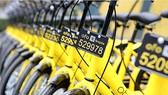 Dịch vụ bike-sharing ở Trung Quốc thu hút vốn đầu tư