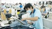 Nhà nước mong muốn thị trường lao động vận hành lành mạnh, người lao động có thu nhập và doanh nghiệp phát triển. Ảnh minh họa