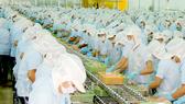 Chế biến xuất khẩu tại một doanh nghiệp thủy sản