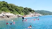 Du khách bơi lặn ngắm san hô ở Cù Lao Chàm
