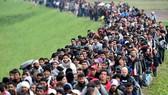 Dòng người tị nạn vào châu Âu. Ảnh: express.co.uk
