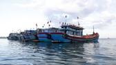 Các tàu cá của Việt Nam. Ảnh minh họa