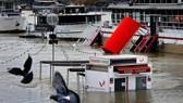 Một quầy vé tàu tham quan bị chìm khi nước sông Seine dâng cao ngày 27-1-2018. Ảnh: REUTERS