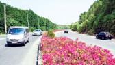 Đường Rừng Sác vào trung tâm huyện Cần Giờ được trải nhựa khang trang. Ảnh: P.LONG
