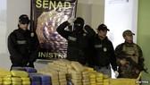 Paraguay bắt giữ xe chở 417kg cần sa