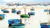 Những ngư dân chất phác, thủy chung nơi làng biển Mũi Rồng