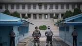 Hai miền Triều Tiên phi vũ trang vùng JSA