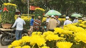 Khách chọn mua hoa chiều 28-1 tại công viên Gia Định