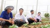 Tham quan mô hình kinh tế hiệu quả của nông dân Sóc Trăng. Ảnh: TUẤN QUANG