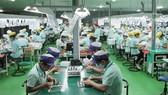 Bác bỏ tin đồn Đài Loan dừng nhận lao động Việt Nam từ 1-3