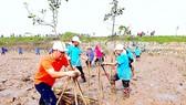 Ra quân làm sạch môi trường bãi biển