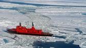 Cạnh tranh ở Bắc cực