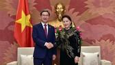 Chủ tịch Quốc hội Nguyễn Thị Kim Ngân tiếp Chủ tịch Nhóm nghị sĩ hữu nghị Hàn-Việt Kim Hack Yong. Ảnh: VGP