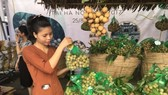 Farmers harvest longan production