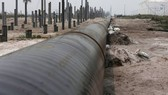 An oil pipeline in Pangerang in Malaysia's southern state of Johor (Source: Reuters)