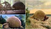 Phát hiện hóa thạch loài Glyptodon 600.000 năm