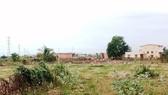 Việc các nhà nuôi yến được xây dựng gần khu dân cư ở Bình Thuận đã khiến cuộc sống của người dân bị ảnh hưởng