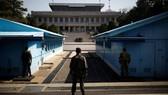 Hai miền Triều Tiên gỡ mìn ở khu phi quân sự