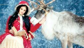 Dịch vụ cho thuê thú đón Giáng sinh