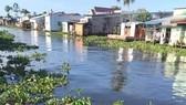 Báo động ô nhiễm nguồn nước