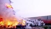 Phạt nặng hành vi đốt rác trong khu dân cư