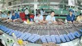 Việt Nam thu hút đầu tư khoảng 112 tỷ USD từ các nước CPTPP