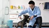 Chú chó nhân bản vô tính Kunxun tương tác với một nhà nghiên cứu ở Bắc Kinh, Trung Quốc, ngày 22-2. Ảnh: CHINA DAILY