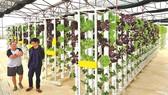 Bây giờ người dân dư sức tạo những dòng nông sản chất lượng cao