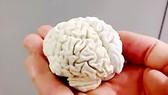 Não người in bằng công nghệ in 3D với chất liệu là chocolate trắng
