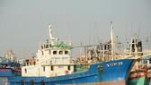 Ngư dân ôm nợ vì tàu nằm bờ