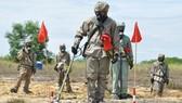 Cần 390 triệu USD để xử lý ô nhiễm dioxin khu vực sân bay Biên Hòa