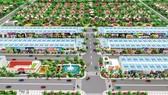 New Times City  - Món hời đầu tư