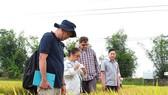 Xuất khẩu gạo -Tìm thị trường mới