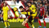 Bournemouth – Brighton: Khi đội khách quyết tâm hơn
