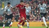 Roberto Firmino đi bóng qua hàngn hậu vệ Newcastle.