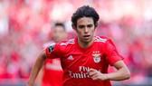 Joao Felix trong màu áo Benfica