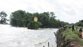 Báo động sụp lún ở bán đảo Cà Mau