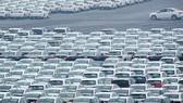 Những chiếc xe mới xuất xưởng tại cảng Đại Liên, tỉnh Liêu Ninh, Trung Quốc. (Nguồn: Reuters)