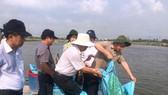 Ngành hàng cá tra một năm chiến thắng