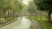 Đường dạo trong Công viên Cầu Giấy. (Ảnh Mạnh Khánh/TTXVN)