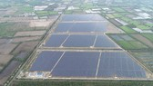 Xung lực mới thị trường điện mặt trời