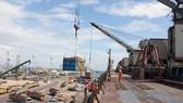 Cảng Quy Nhơn sau thu hồi và chuyển giao sẽ có diện mạo ra sao?